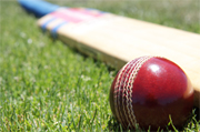 Live Cricket Betting